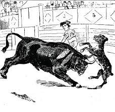 el-perro-paco-en-los-toros.jpg